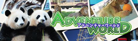 海・陸・空の動物たち、自然とのふれあいのテーマパーク「アドベンチャーワールド」