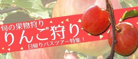 旬の果物狩り!りんご狩り日帰りバスツアー特集2016