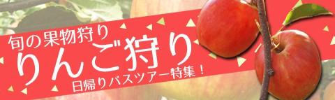 旬の果物狩り!りんご狩り日帰りバスツアー特集
