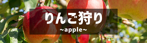 りんご狩り特集
