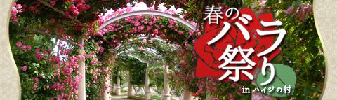 春のバラ祭り特集