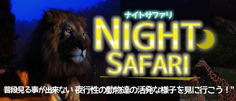 姫路セントラルパーク『ナイトサファリ』へ行く日帰りバスツアー!