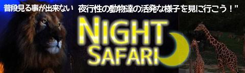 姫路セントラルパーク『ナイトサファリ』特集