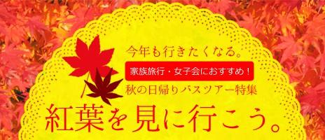 今年も行きたくなる紅葉狩り!関東発日帰りバスツアー特集
