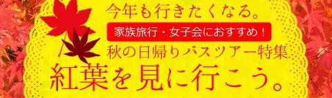 今年も行きたくなる紅葉狩り!関東発日帰りバスツアー特集!