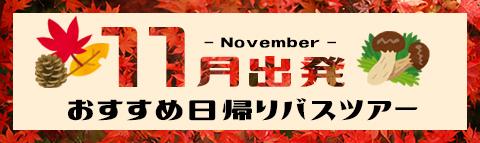 11月出発おすすめ!日帰りバスツアー!!