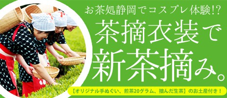 コスプレ体験!?茶摘み衣装で茶摘み体験♪人気の日帰りバスツアー!!