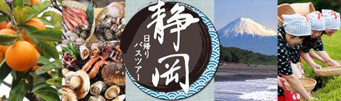 魅力いっぱいな『静岡』をめぐる!日帰りバスツアー特集!