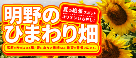 明野のひまわり畑!日帰りバスツアー!!