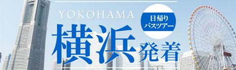 【横浜発着】おすすめ日帰りバスツアー特集